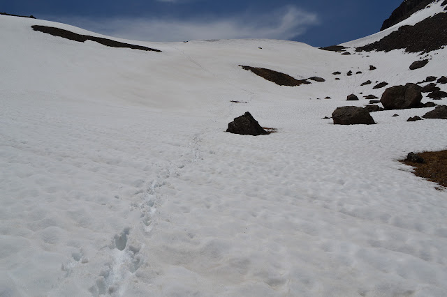 now tracked snow