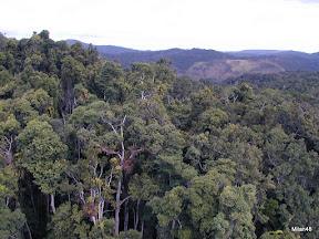 Avstralija 17010398.jpg