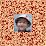 居不易's profile photo