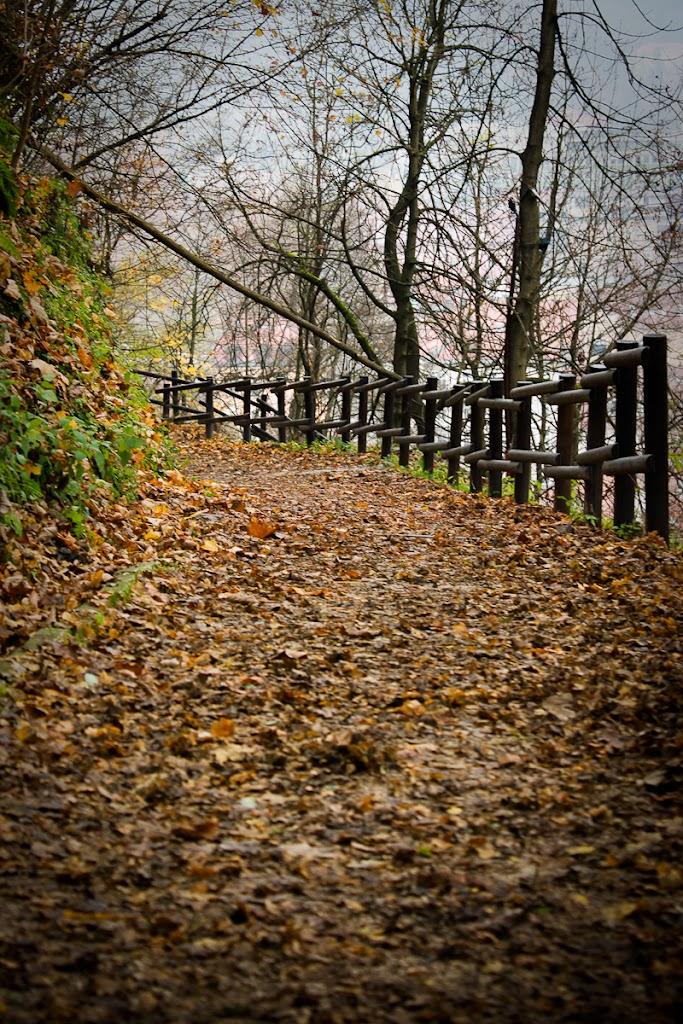 Foggy Sunday in Ljubljana - Vika-7735.jpg