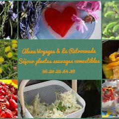 La Retrouvade - Séjour plantes sauvages comestibles