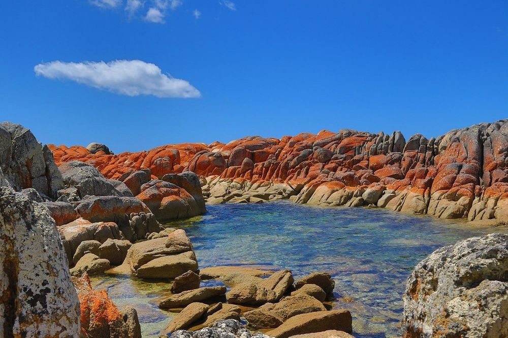 bay-of-fires-tasmania-6