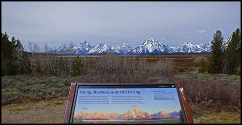 Young, Restless, Still Rising - Tetons