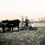1941-besson.jpg