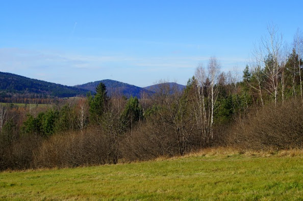 Ścieżka przyrodniczo-dydaktyczna Ostrym Działem do rezerwatu Cisy w Serednicy, Serednica,