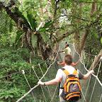 Canopy walk in Kinabalu Park