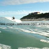 DSC_4739.thumb.jpg