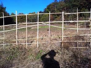 Photo: 柵を押し上げて鹿が入ります^^