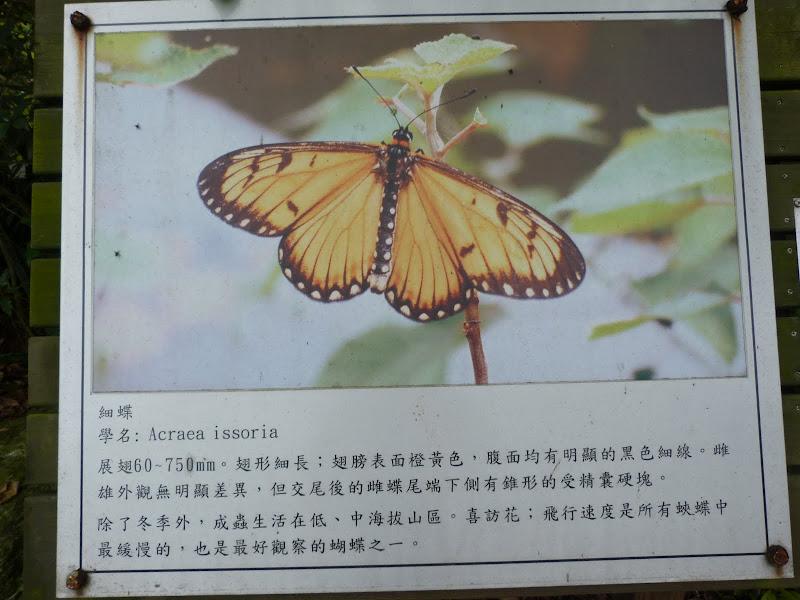 TAIWAN Dans la region de Hualien. Liyu lake.Un weekend chez Monet garden et alentours - P1010645.JPG