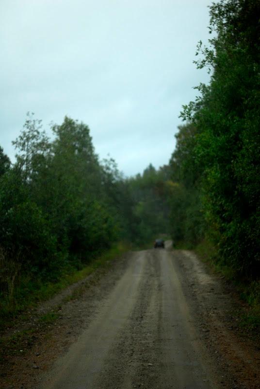 Дорога на озеро пизанец