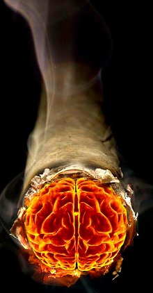 cerebro ardiendo