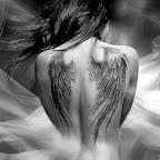pt00066-e939eaa78db2b0e7e0d19d1fcd39d0cd-Black and White Angel's wings.jpg