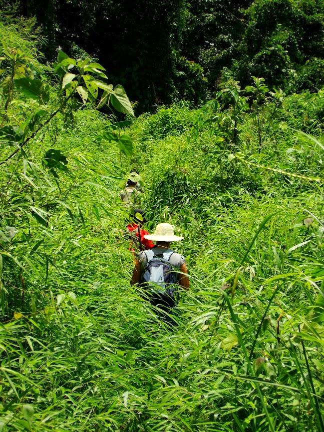 Un camino de Laos