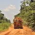 """""""Fraudes grotescas"""", diz delegado da Polícia Federal sobre madeira ilegal que ministro de Bolsonaro quer liberar"""