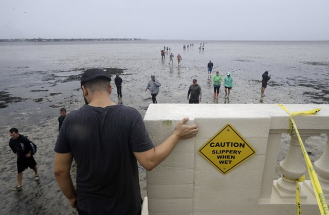 People walk out onto what is normally four feet of water in Old Tampa Bay, Sunday, 10 September 2017, in Tampa, Florida. Hurricane Irma and an unusual low tide pushed water out more than 100 yards. Photo: Chris O'Meara / AP Photo