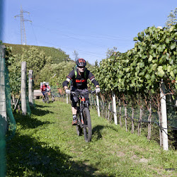 Biobauer Rielinger Tour 29.09.16-6676.jpg