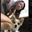Collie Quah's profile photo
