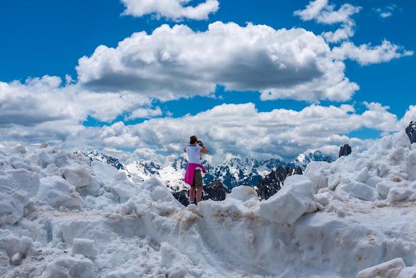 Fucsia nella neve di Gab68