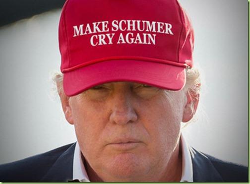 trump schumer hat