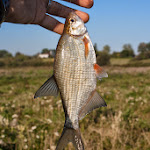 20140905_Fishing_Lysyn_002.jpg