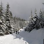 2012_01_15_Cypress_Snowshoe