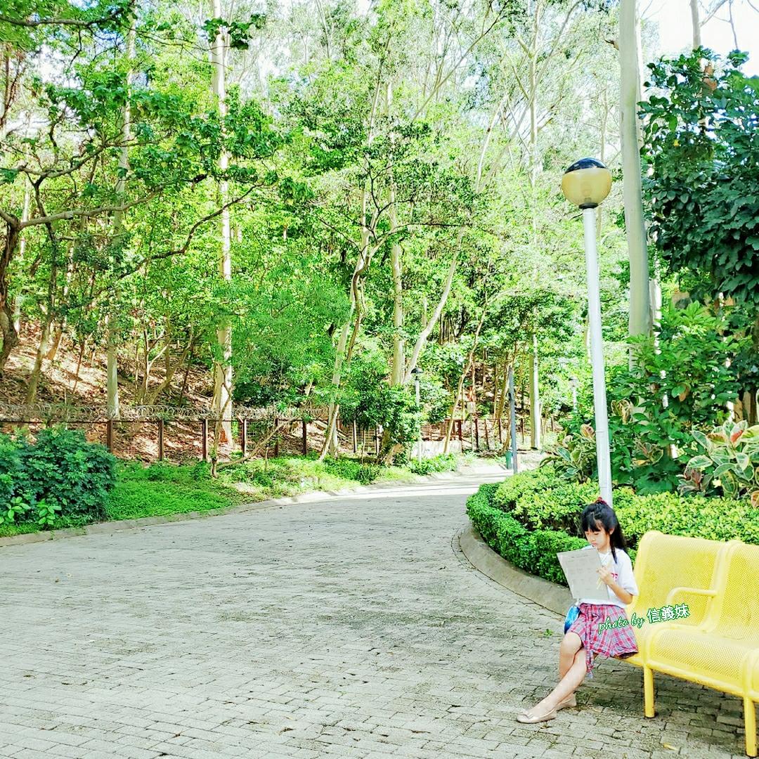 城の動植物公園 ~ 新城市廣場 ~