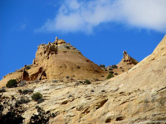 Navajo Sandstone peaks above Little Fork