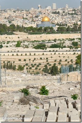 Jerusalem from Mount of Olives, tb060116015