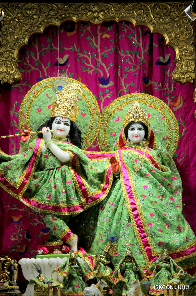 ISKCON Juhu Mangal Deity Darshan on 19th Nov 2016 (15)