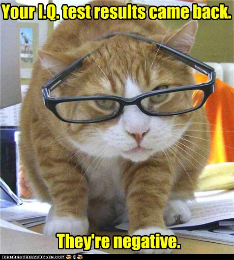photo of a cat wearing glasses saying your IQ scores came back and are negative