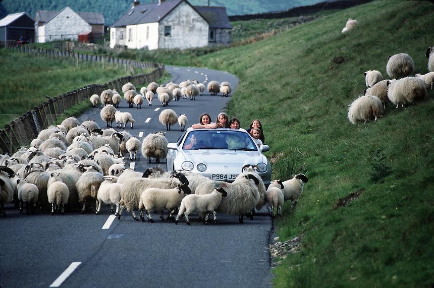 Consejos para alquilar un coche en Escocia