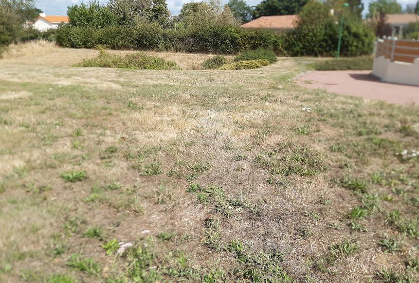 Vente Terrain à bâtir - 568m² à Le May-sur-Èvre (49122)