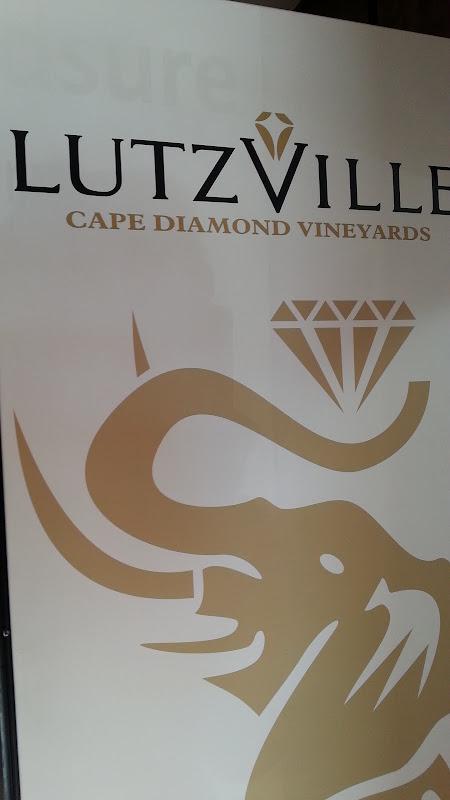 Lutzville Vineyards-9541