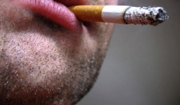 Les pathologies liées au tabagisme tuent 45 personnes par jour en Algérie