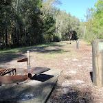 Fire pit in campsite