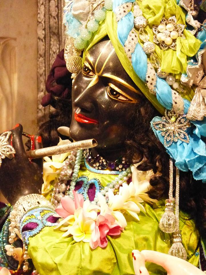 ISKCON New Govardhan Deity Darshan 01 Mar 2016 (2)