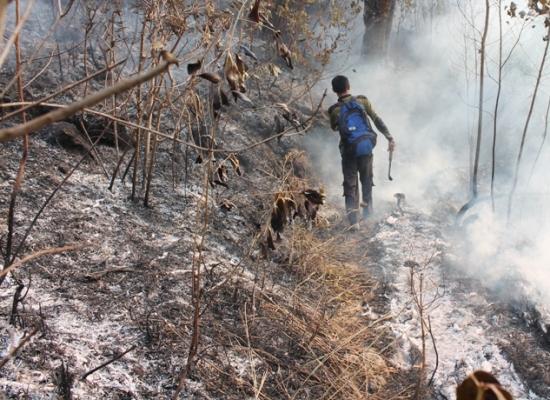 Berita foto video sinar ngawi terbaru: Warga desa lereng lawu mulai siaga pantau kebakaran