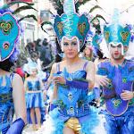 CarnavaldeNavalmoral2015_317.jpg