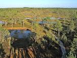 Лаахемаа. Познавательная тропа через болото Виру