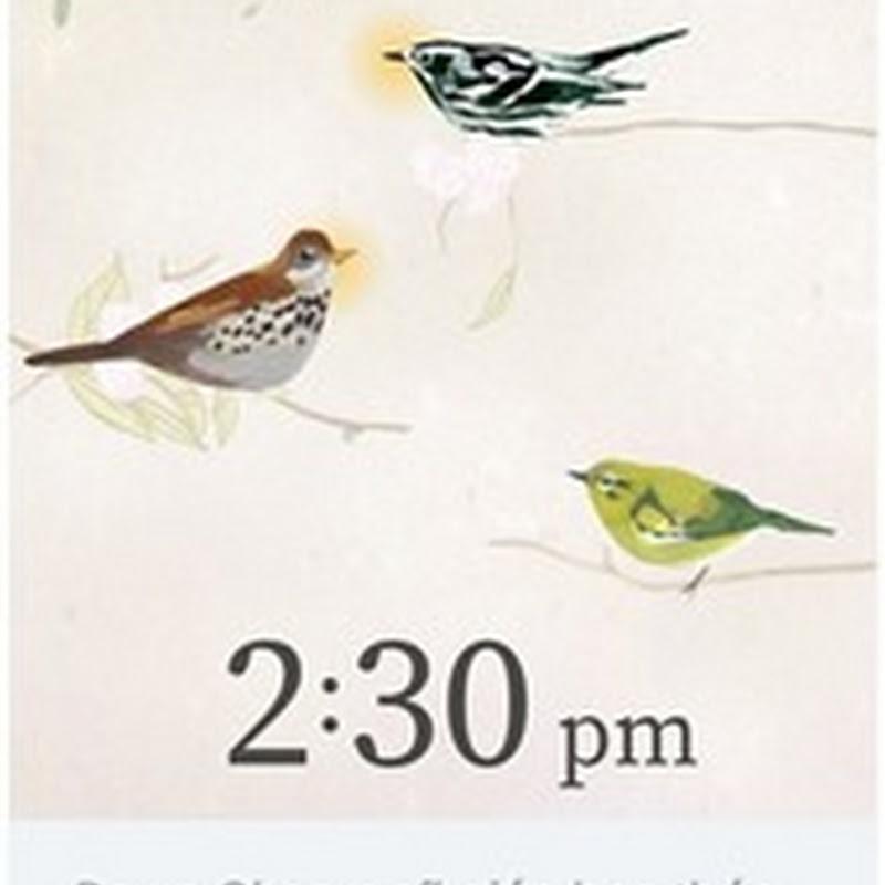 |Giới thiệu App| Thức dậy đúng giờ với đàn chim ảo