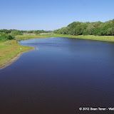 04-06-12 Myaka River State Park - IMGP9873.JPG