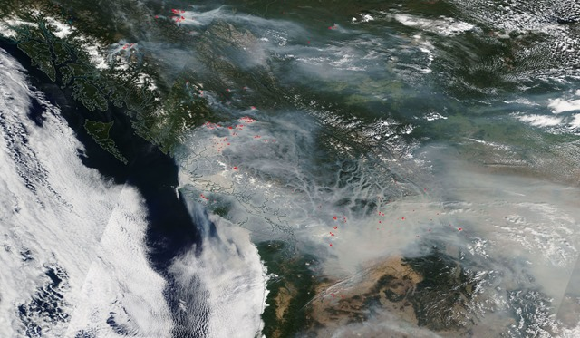 Satellite view of wildfires and smoke in British Columbia, 19 August 2018. Photo: NASA Worldview