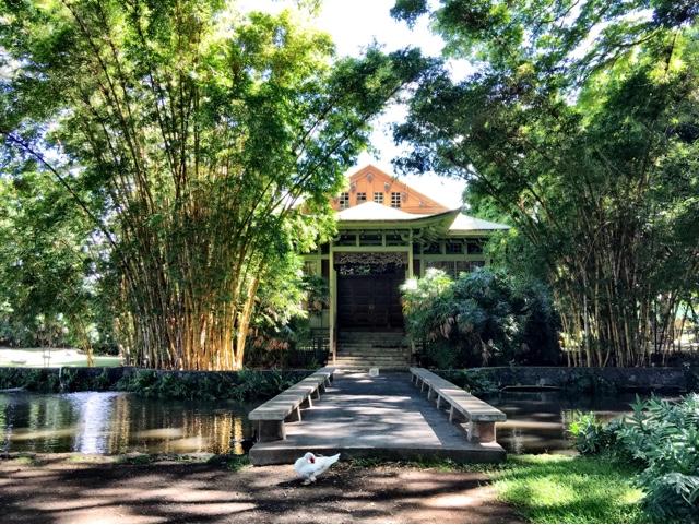 Hawaii Mom Blog: Moanalua Gardens