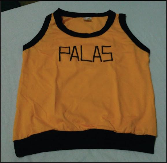 Colégio Palas