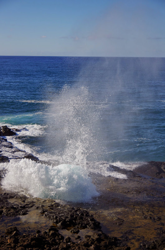 06-27-13 Spouting Horn & Kauai South Shore - IMGP9748.JPG