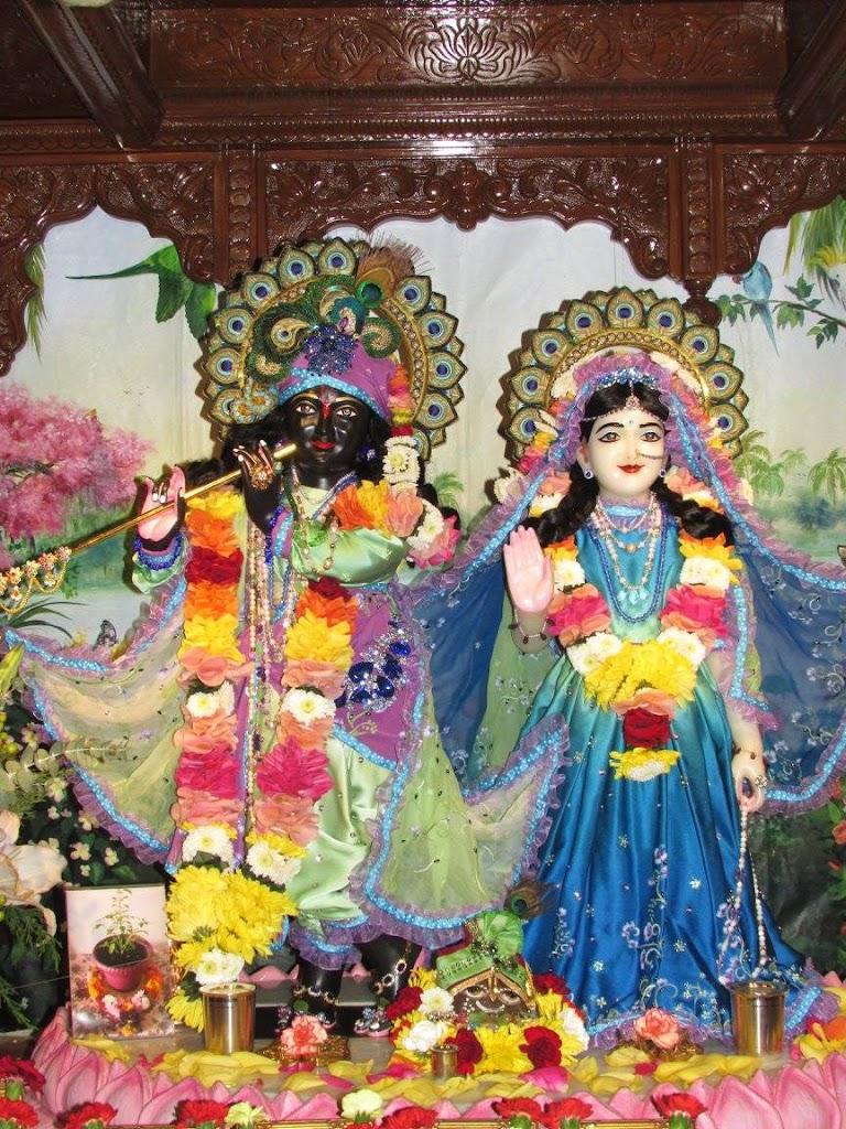 ISKCON New Goloka Deity Darshan 11 Dec 2016 (10)