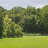 Les Hautes-Lisières (Rouvres, 28), 23 juin 2011. Photo : J.-M. Gayman
