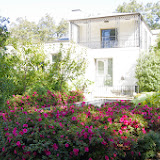 10-26-14 Dallas Arboretum - _IGP4287.JPG