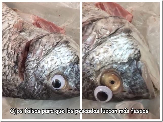 cosasdivertidas pescados con ojos falsos