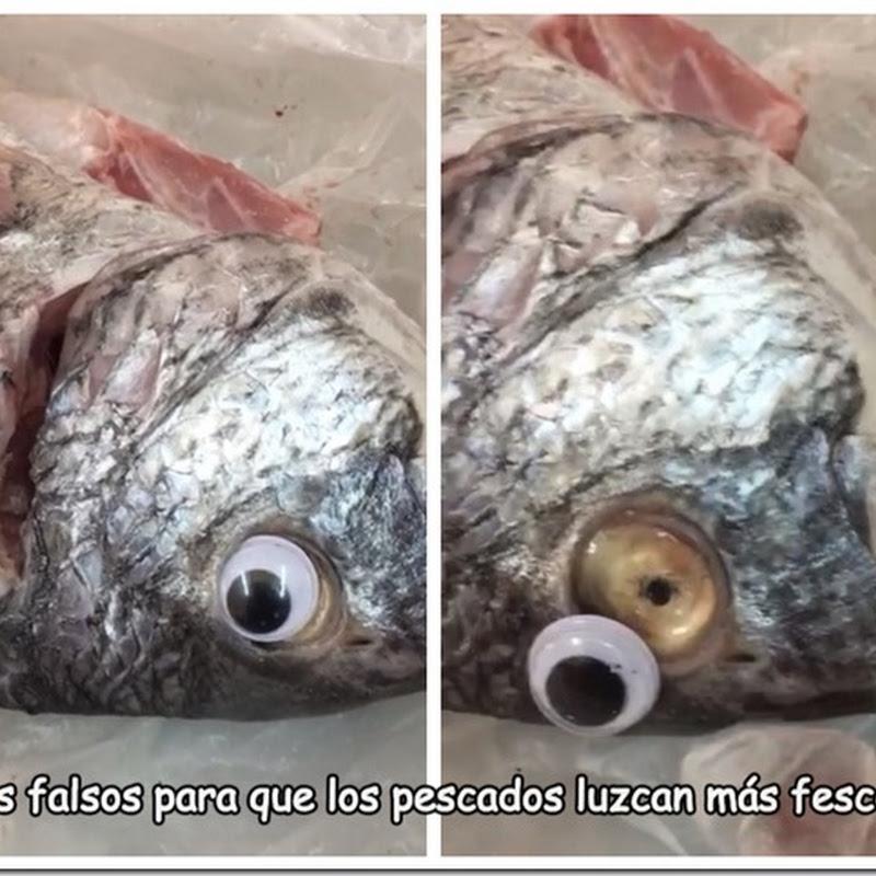 Ponían ojos falsos al pescado para que pareciera fresco